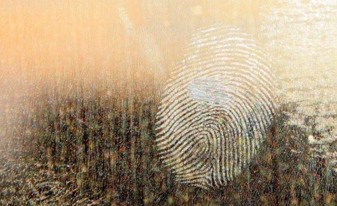 Русские таможенники будут проверять награницах отпечатки пальцев
