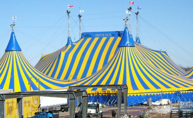 Публичный совет Минкульта призвал ограничить работу иностранных цирков