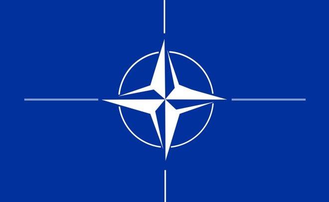 Климпуш-Цинцадзе: вступление вНАТО является нашей стратегической целью