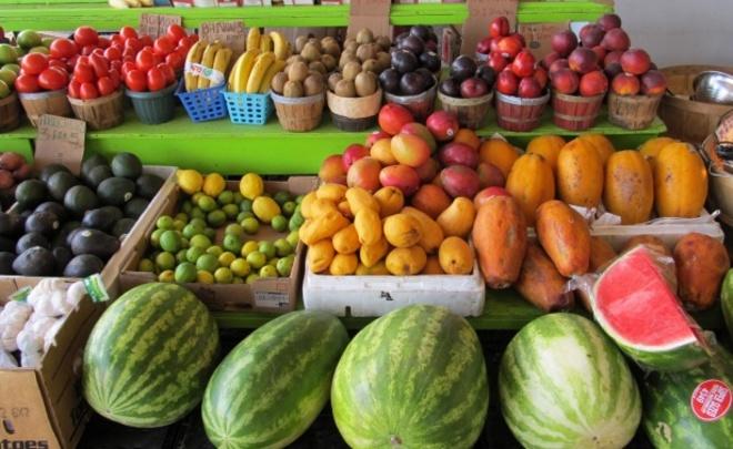 Фальсифицированные продукты могут пустить под бульдозер