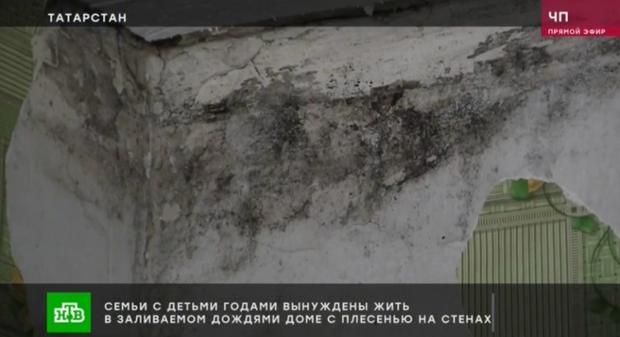 Бастрыкин поручил проверить сообщение СМИ о зеленодольских семьях, проживающих в доме с плесенью