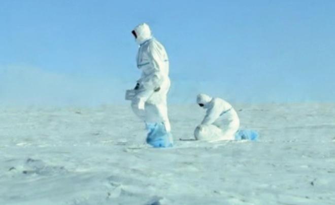 Российский фильм про Антарктиду получил Гран-при фестиваля научного кино вЧехии