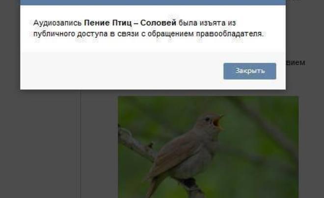 Правообладатели требуют удаления 10 видеогрупп во«ВКонтакте»