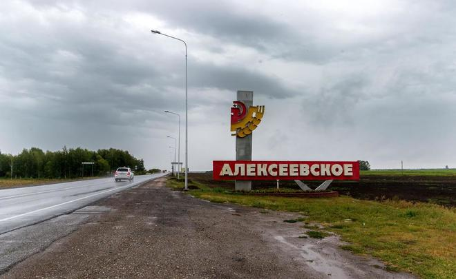 Алексеевский район тат
