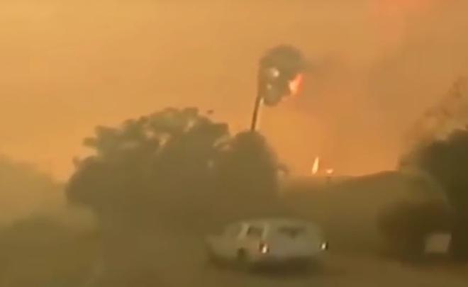 ВИзраиле задержали 40 человек, подозреваемых вподжоге леса