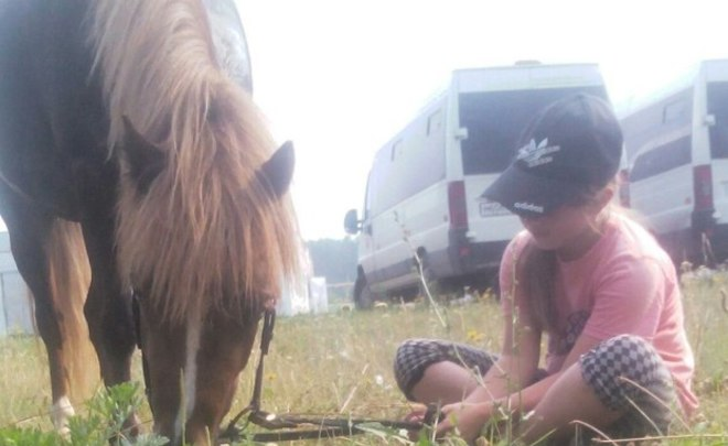 ВНижнекамске обвиняемым в погибели 11-летней наездницы утверждено обвинительное заключение