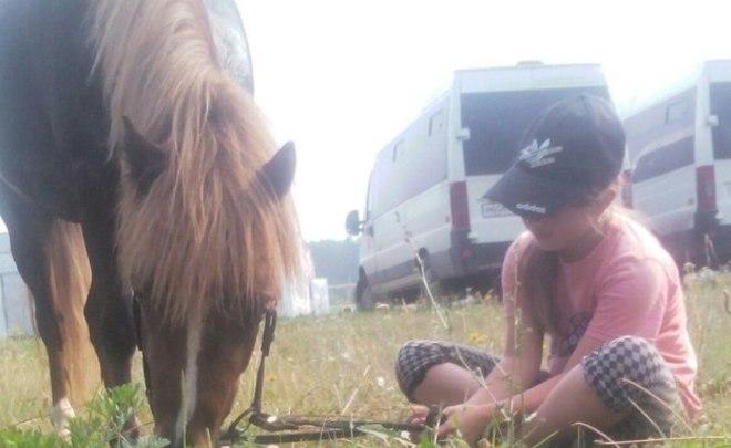 2-х татарстанцев будут судить засмерть ребенка налошади