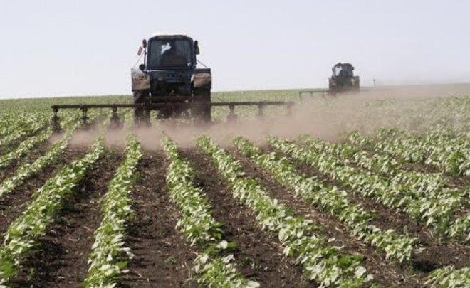 Сельскому хозяйству РФ предсказали 10%-ную долю вВВП