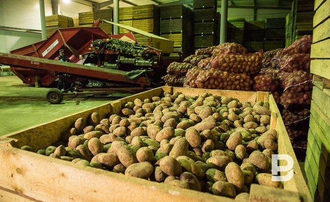 ВКазани в прошлом году запретили реализацию 264 тонн продуктов
