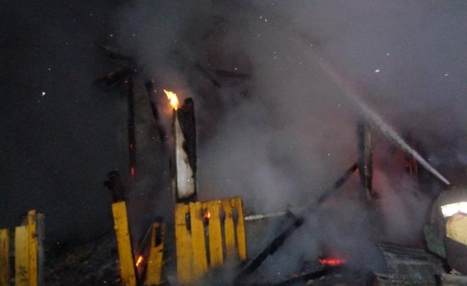 МЧС: Ужителя Казани напожаре погибли мать сдругом