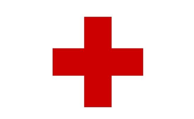 Красный Крест отправил 103,5 тонны гуманитарной помощи наДонбасс