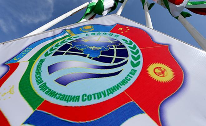Сайт новости новосибирского района