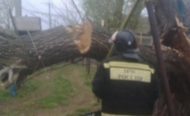 ВТатарстане сильный ветер сломал клинику, библиотеку, школы ичастные дома