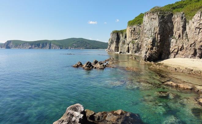 Совфед: иностранцы смогут попасть впорт Владивосток поэлектронным визам